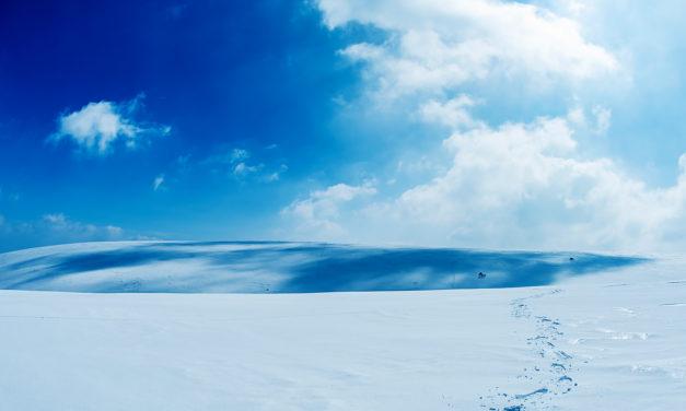 Crêtes des Monts du Forez en hiver